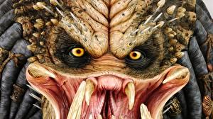 Pictures Predator - Movies film