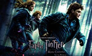 Wallpapers Harry Potter Movies