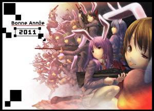 Hintergrundbilder Bunnygirl Hasenohren Anime