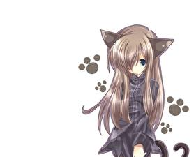 Tapety na pulpit Catgirl