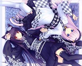Hintergrundbilder Neko Girls