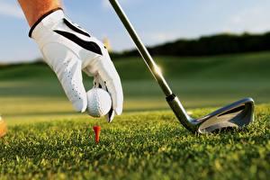 Hintergrundbilder Golf Ball Handschuh Gras sportliches