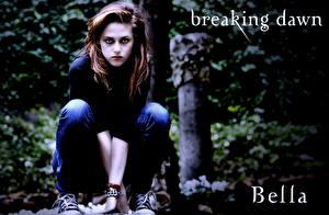 Bakgrundsbilder på skrivbordet The Twilight Saga The Twilight Saga: Breaking Dawn Kristen Stewart