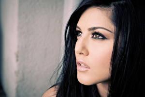 Hintergrundbilder Sunny Leone