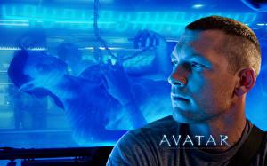 Images Avatar