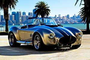 Bilder Retro Roadster Shelby Cobra  Roadster(AC Cars)