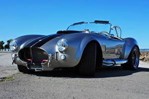 Fotos Antik Roadster Shelby Cobra Roadster(AC Cars)