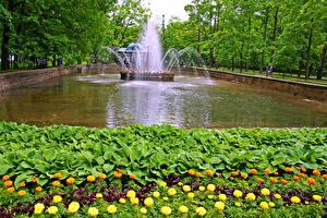 Hintergrundbilder Springbrunnen