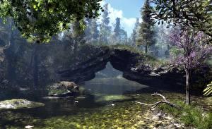 3D-Grafik Natur