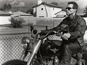 Wallpaper The Terminator  Terminator 2: Judgment Day Arnold Schwarzenegger