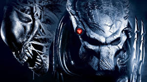 Wallpaper Predator - Movies