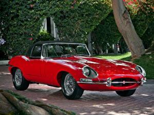 Fotos Jaguar Roadster