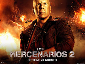 Wallpaper The Expendables 2010 Bruce Willis