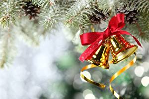Fotos Feiertage Neujahr Glocke Ast Weihnachtsbaum Zapfen