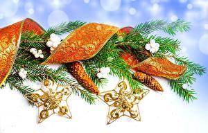 Bilder Feiertage Neujahr Ast Weihnachtsbaum Zapfen Band