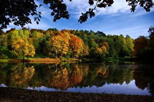 Bilder Park Litauen Vilnius Markuchiai park Natur