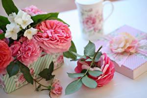 Bilder Rosen Ast Blumen
