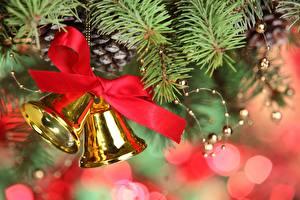 Bilder Feiertage Neujahr Ast Weihnachtsbaum Zapfen Glocke Band