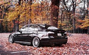 Pictures BMW Seasons Autumn Black Leaf automobile