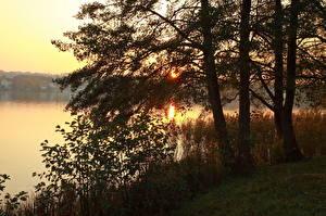 Hintergrundbilder Flusse Sonnenaufgänge und Sonnenuntergänge Deutschland Bäume Ast  Natur