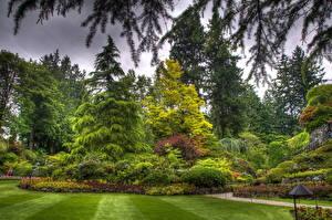 Bilder Garten Landschaftsbau Kanada Gras Ast HDR Design Butchart Victoria Natur