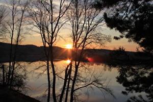 Hintergrundbilder Sonnenaufgänge und Sonnenuntergänge See Lichtstrahl Bäume Ast Natur