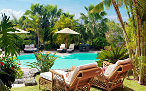 Image Spa town Swimming bath Palms Sunlounger Cities