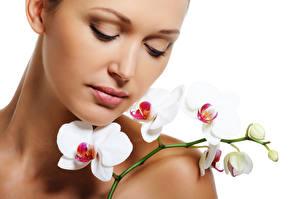 Bilder Orchideen Gesicht Ast Mädchens