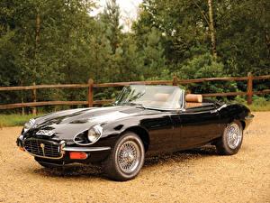 Bilder Jaguar Schwarz Auto Scheinwerfer Roadster  Autos