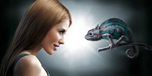Fotos & Bilder Reptilien Blick Haar Brünette Chamäleons Braunhaarige Humor Mädchens Tiere fotos