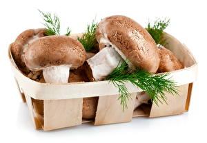 Hintergrundbilder Pilze Das Essen Dill Weidenkorb Lebensmittel
