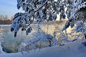 Hintergrundbilder Jahreszeiten Winter Flusse Schnee Ast Natur