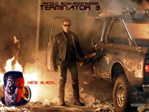 Picture The Terminator  Terminator 3: Rise of the Machines