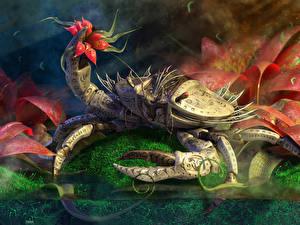 Bilder Krabben - Tiere Fantasy