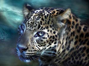 Fotos von Leopard Groe Katze Tiere Gezeichnet